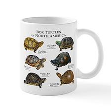 Box Turtles of North America Mug