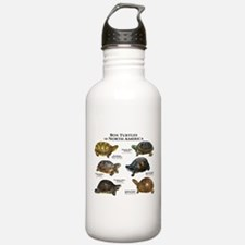 Box Turtles of North America Water Bottle