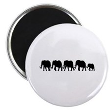Elephant Train Magnet
