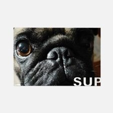 Pug Cooties Rectangle Magnet (10 pack)