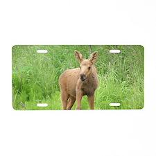 Moose Calf #01 Aluminum License Plate