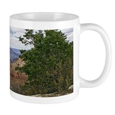 Grand Canyon Natl Park Mug