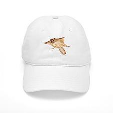 Cute Flying squirrel Baseball Cap