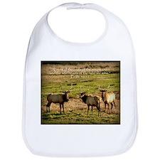3 Bull Elk, Psalm 50:11 Bib