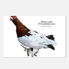 Willow Ptarmigan Postcards (Package of 8)