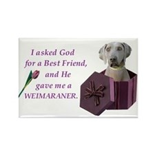 I Asked God -RecMag -Weimaraner Magnets
