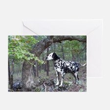 Dalmation landscape Greeting Cards (Pk of 20)