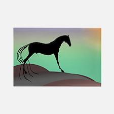 desert horse Rectangle Magnet