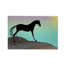 desert horse Rectangle Magnet
