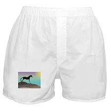 desert horse Boxer Shorts