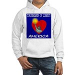 America Torchbearer of Libert Hooded Sweatshirt