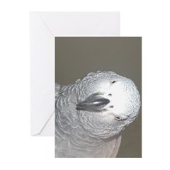 African Grey Dex Greeting Cards (Pk of 20)