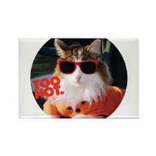 Hot Kitty Rectangle Magnet (10 pack)