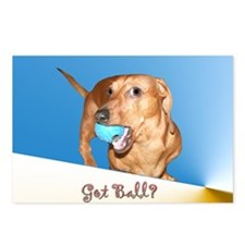 Got Ball Dachshund Dog Postcards (Package of 8)
