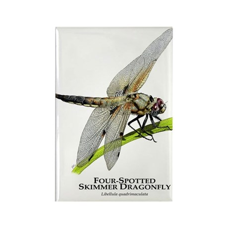 Four-Spotted Skimmer Dragonfly Rectangle Magnet