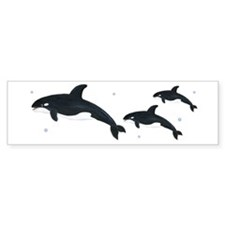 Killer Whale Car Sticker