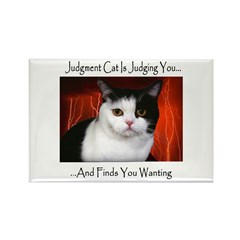 Judgment Cat Rectangle Magnet (10 pack)