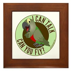 I Can Talk, Can You Fly: Red Bellied Parrot Framed