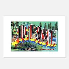 Redwood Big Basin Greetings Postcards (Package of