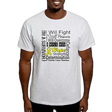 Testicular Cancer Persevere T-Shirt