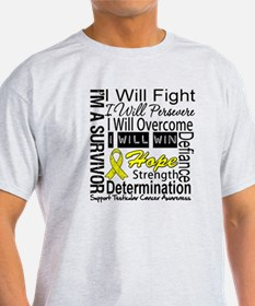 Testicular Cancer Persevere T-Shirt