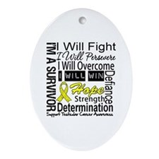 Testicular Cancer Persevere Ornament (Oval)