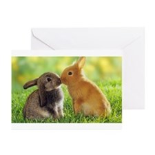 Love Bunnies Greeting Cards (Pk of 10)