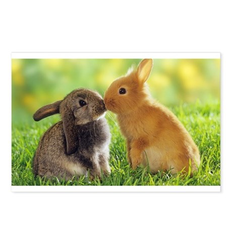 Love Bunnies Postcards (Package of 8)