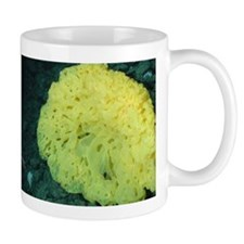 Yellow Sponge on Ocean Floor Mug