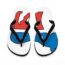 2012 Election. Flip Flops
