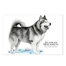 Alaskan Malamute Postcards (Package of 8)