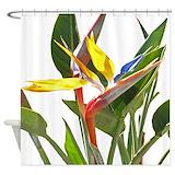 Bird of paradise Shower Curtains
