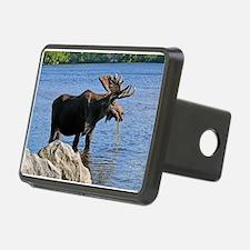 Moose Rectangular Hitch Coverle)