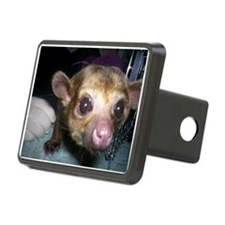 Guinness the kinkajou up clos Hitch Cover