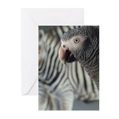DQ Timneh Greeting Cards (Pk of 10)