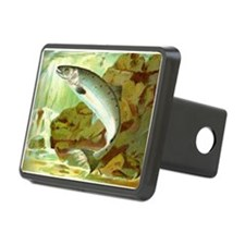 Salmon Rectangular Hitch Cover