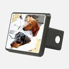 Naptime Doxies Hitch Cover