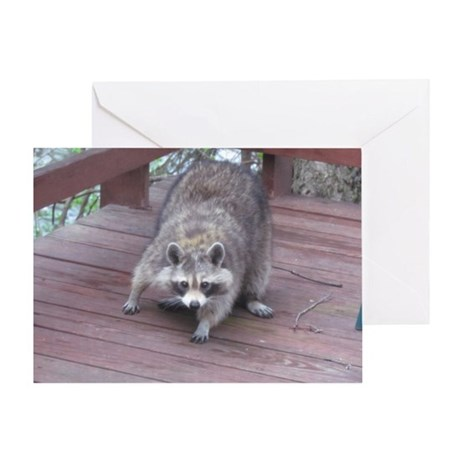 coon Greeting Cards