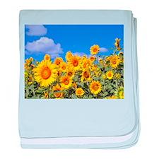 Flowers: Sun Flowers baby blanket
