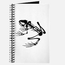 Desert Frog - B (1) Journal