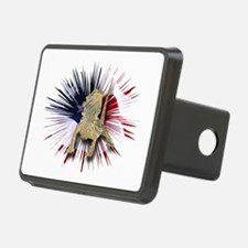 Bearded Dragon USA Hitch Cover