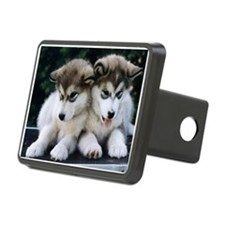 The Huskies Hitch Cover