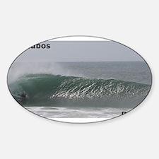 Bodyboard Supertubos Oval Decal