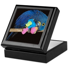 Innocent Cyrus Keepsake Box