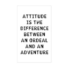 Attitude Decal