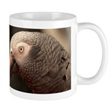 African grey parrots Coffee Mugs