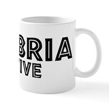 Cambria Native Mug