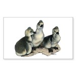 Tufted Toulouse Goslings Sticker (Rectangle 50 pk)