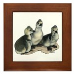 Tufted Toulouse Goslings Framed Tile