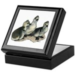 Tufted Toulouse Goslings Keepsake Box